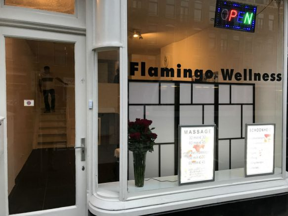 flamingo-wellness